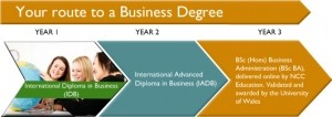 Business Degree Structure