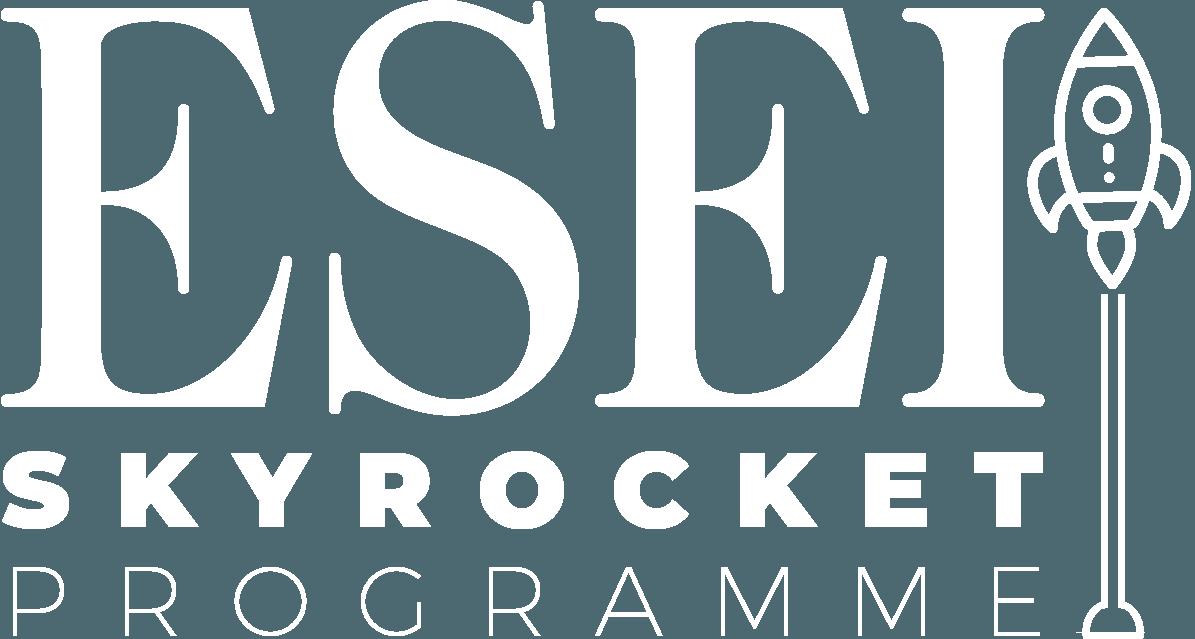 Skyrocket Programme